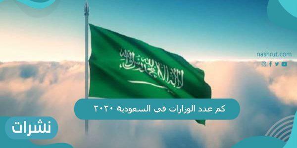 كم عدد الوزارات في السعودية 2020