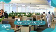ما هو نظام حماية الأجور في السعودية