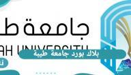 بلاك بورد جامعة طيبة .. رابط دخول بلاك بورد جامعة طيبة