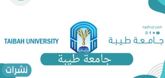 تخصصات جامعة طيبة والنسب المطلوبة للقبول