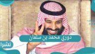دوري محمد بن سلمان 2021