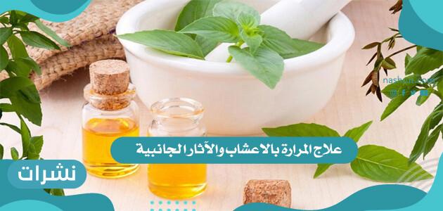 وصفات علاج المرارة بالأعشاب مجرب | الآثار الجانبية