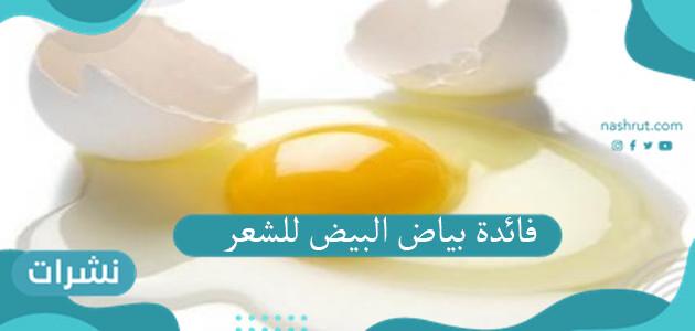 فائدة بياض البيض للشعر للحصول على شعر صحي ناعم وطويل