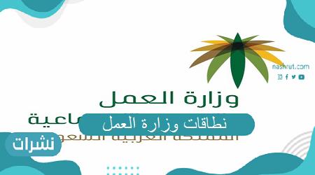 نطاقات وزارة العمل بالمملكة العربية السعودية تعرف على طريقة التسجيل