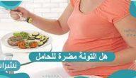 هل التونة مضرة للحامل ؟ وما هي الأنواع التي يمكن تناولها خلال فترة الحمل ؟