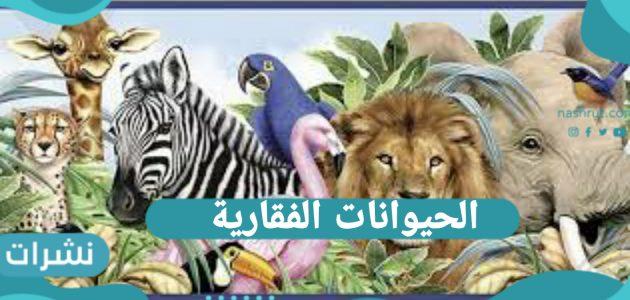 الحيوانات الفقارية.. والحيوانات اللافقارية