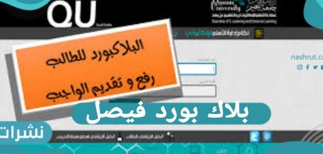 تحميل تطبيق بلاك بورد فيصل | نظام جامعة الملك فيصل تسجيل الدخول