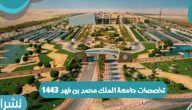 تخصصات جامعة الملك محمد بن فهد 1443 للعام الدراسي الجديد