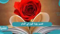تفسير رؤية الورد في المنام للعزباء والمتزوجة | معني حلم الورد الناشف