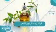 فوائد زيت الزيتون للشعر وطريقة استخدامه وأضراره المحتملة
