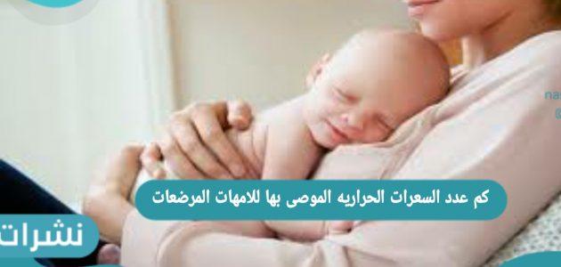 كم عدد السعرات الحرارية الموصى بها للأمهات المرضعات