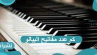 كم عدد مفاتيح البيانو وما هي أنواعه وكم يبلغ وزنه ؟