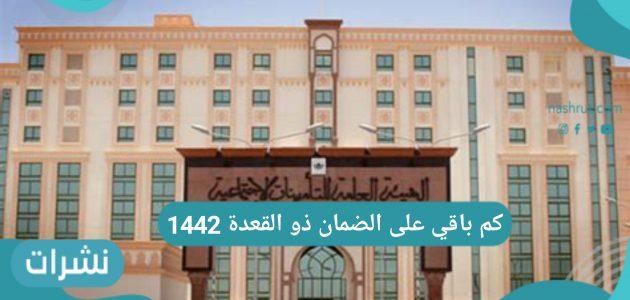 كم باقي على الضمان ذو القعدة 1442 عبر رابط وزارة المملكة السعودية
