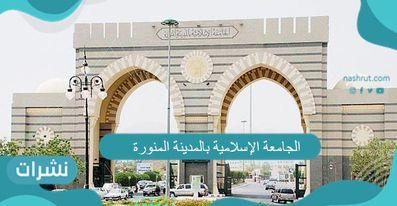 الجامعة الإسلامية بالمدينة المنورة.. شروط القبول بالجامعة الإسلامية.. نتائج الاختبارات
